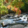 High Country - Biltmore House to WInkler's Creek : Autumn 2006.  Vibrant colors abound.  Included, is Asheville, NC.